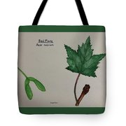 Red Maple Tree Id Tote Bag