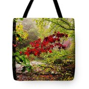 Red Maples Tote Bag