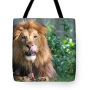 Red Meat Tote Bag