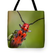 Red Milkweed Beetle Tote Bag