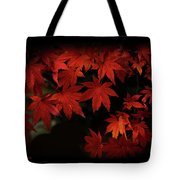 Red  Momiji Tote Bag