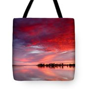 Red Morning Tote Bag