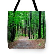 Red Mountain Trail  Tote Bag