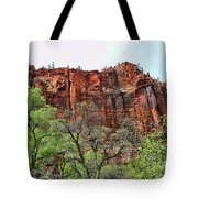 Red Mountains Zion National Park Usa Tote Bag