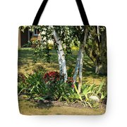 Red Mums And Birch Trees Tote Bag
