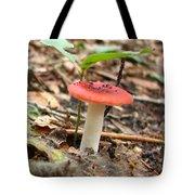 Red Mushroom 1 Tote Bag