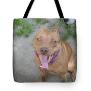 Red Nose Pitty Tote Bag