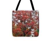 Red Oak 2 Tote Bag
