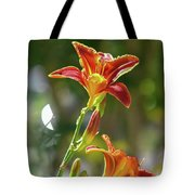 Red Orange Day Lilies I Tote Bag