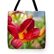 Red Orange Lily By The Lake Tote Bag