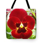 Red Pansy Tote Bag