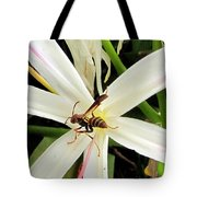 Red Paper Wasp And Spider Lily 000 Tote Bag
