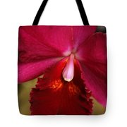 Red Passion Orchid Tote Bag