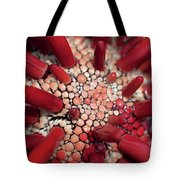 Red Pencil Urchin Tote Bag
