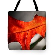 Red Pin Oak Leaf Tote Bag