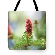 Red Pine Cone In Spring Time Tote Bag