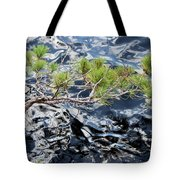 Red Pine Tote Bag