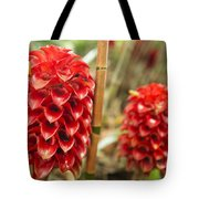 Red Pineapple Ginger Plant Tote Bag