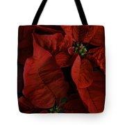 Red Poinsettia Tote Bag by Ann Garrett