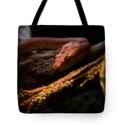 Red Poisonous Snake Tote Bag
