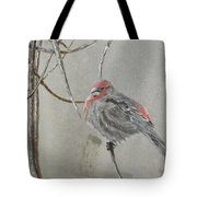 Red Poll In Winter Tote Bag