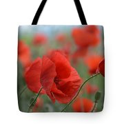 Red Poppies Blooming Tote Bag