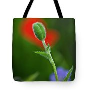Red Poppy Bud Tote Bag