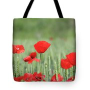 Red Poppy Flower And Green Wheat Nature Spring Scene Tote Bag