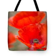 Red Poppy For Remembrance Tote Bag