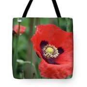 Red Poppy Getting All The Attention Tote Bag