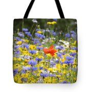 One Red Poppy Amongst The Wildflowers Tote Bag