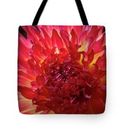 Red Purple Dahlia Flower Summer Dahlia Garden Baslee Troutman Tote Bag