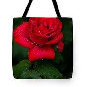 Red Rain 2 Tote Bag