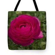 Red Ranunculus Tote Bag