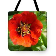 Red Red Bloom Tote Bag