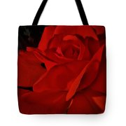 Red Red Rose  Tote Bag by Daniele Smith