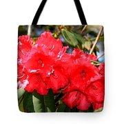 Red Rhodie Tote Bag