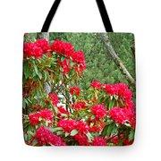 Red Rhododendron Garden Art Prints Rhodies Landscape Baslee Troutman Tote Bag