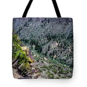 Red River Gorge Tote Bag