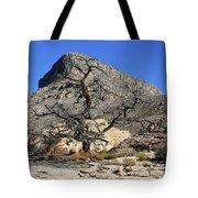 Red Rock Canyon Nv 1 Tote Bag