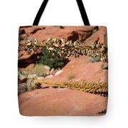 Red Rock Canyon Nv 11 Tote Bag
