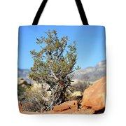 Red Rock Canyon Nv 3 Tote Bag