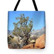 Red Rock Canyon Nv 4 Tote Bag