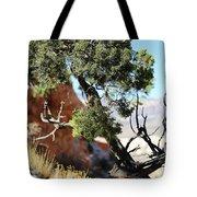 Red Rock Canyon Nv 5 Tote Bag