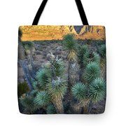Red Rock Canyon Tote Bag