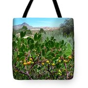 Red Rock Canyon Wild Flowers 20150525-06 Tote Bag