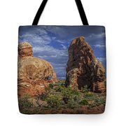 Red Rock Formations On A Desert Plateau In Utah Tote Bag