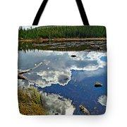 Red Rock Lake Fall Study 2 Tote Bag