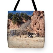 Red Rock Riders Tote Bag