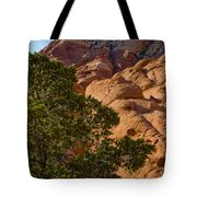 Red Rock Textures Tote Bag